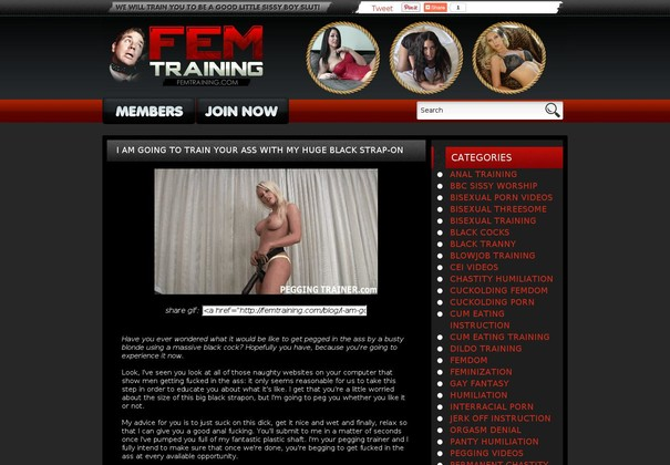 fem training femtraining.com